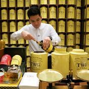 茶之初体验