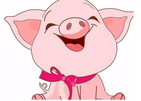 十二生肖6-萌猪压轴