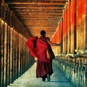 【爱如禅,你如佛】21、旅梦-喜马拉雅fm