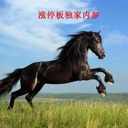 """2贸易中国的""""深圳特区"""",这个概念不一般,重点关注!(附股)-喜马拉雅fm"""