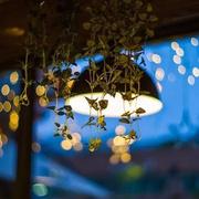 夜读(8)简嫃:相忘于江湖-喜马拉雅fm