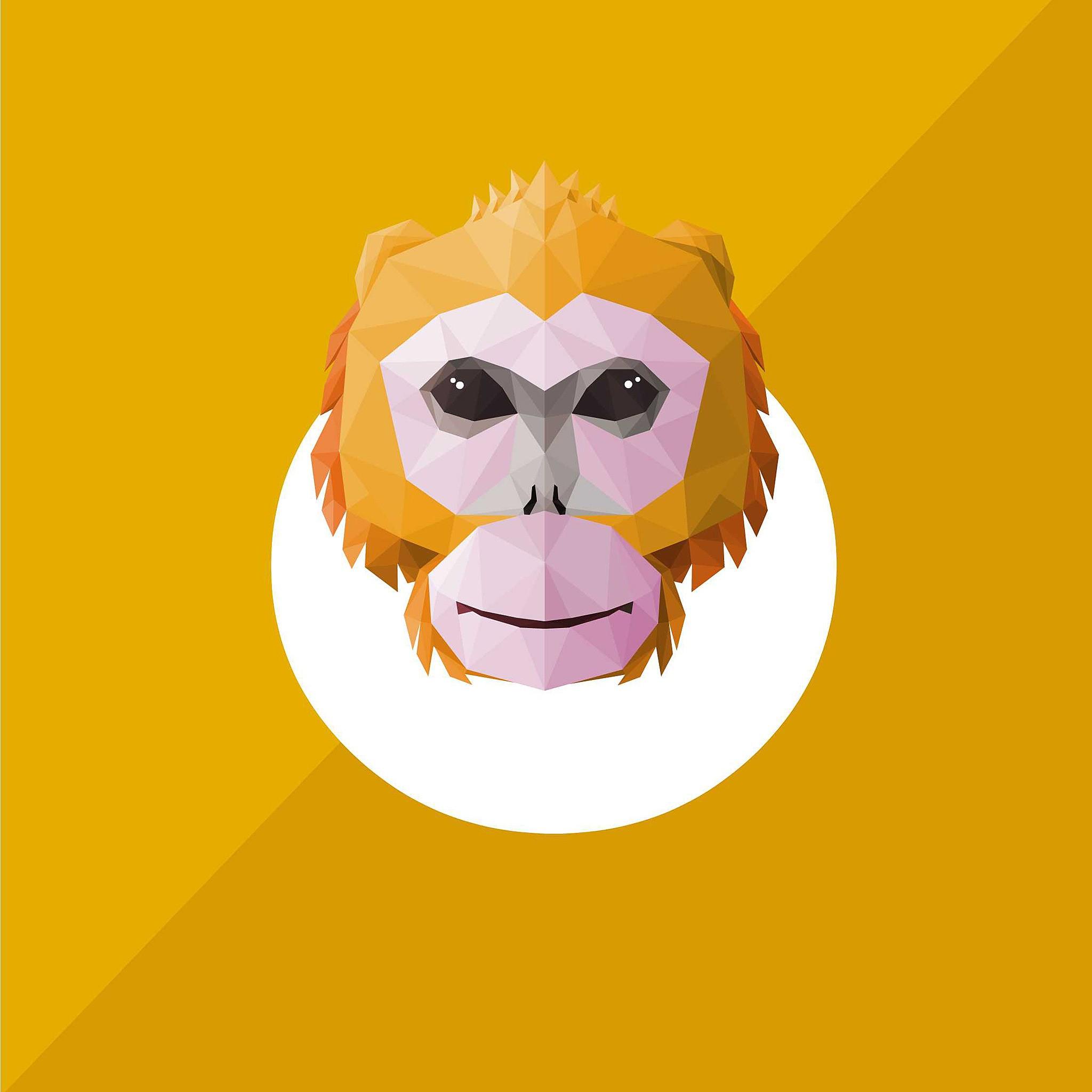 十二生肖3-猴,中国最著名的动物