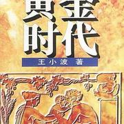 黄金时代 (王小波著中篇小说)