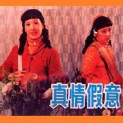 第3回 人财两空 (张如君 薛惠君 孙淑英)-喜马拉雅fm