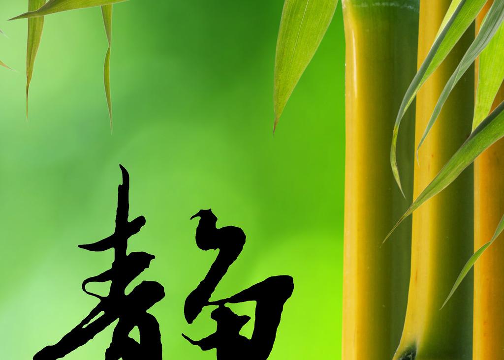 背景 壁纸 风景 绿色 绿叶 树叶 植物 桌面 750_536