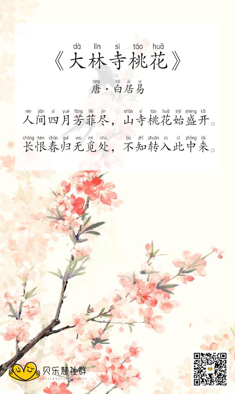 唐·白居易《大林寺桃花》图片