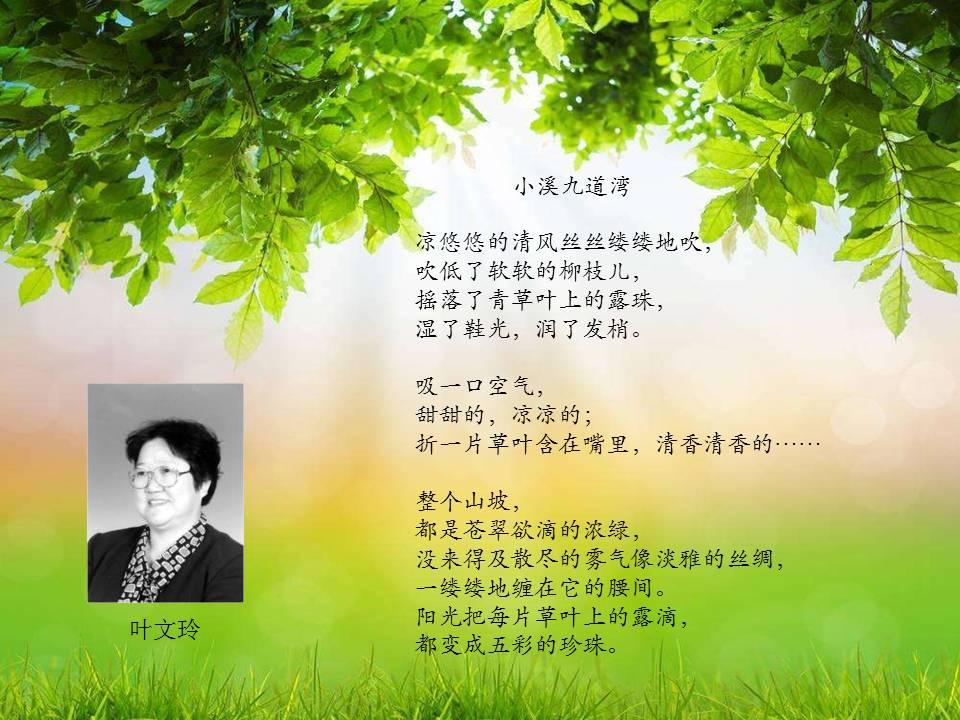 5.14晨露 《小溪九道弯》叶文玲图片