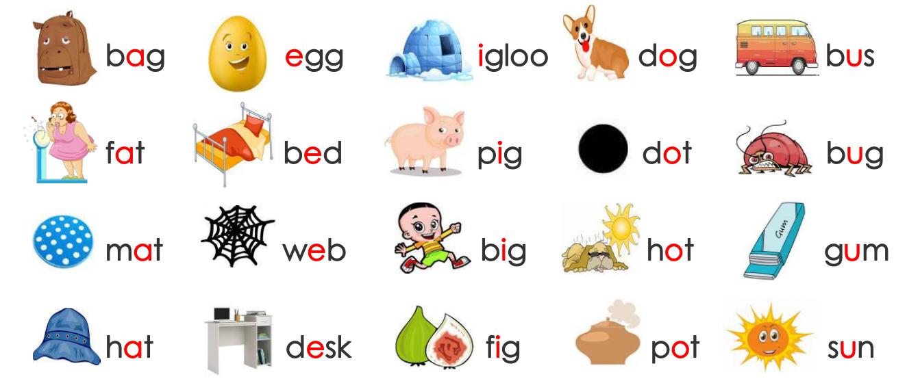 自然拼读③-元音字母的短音和字母C的读音