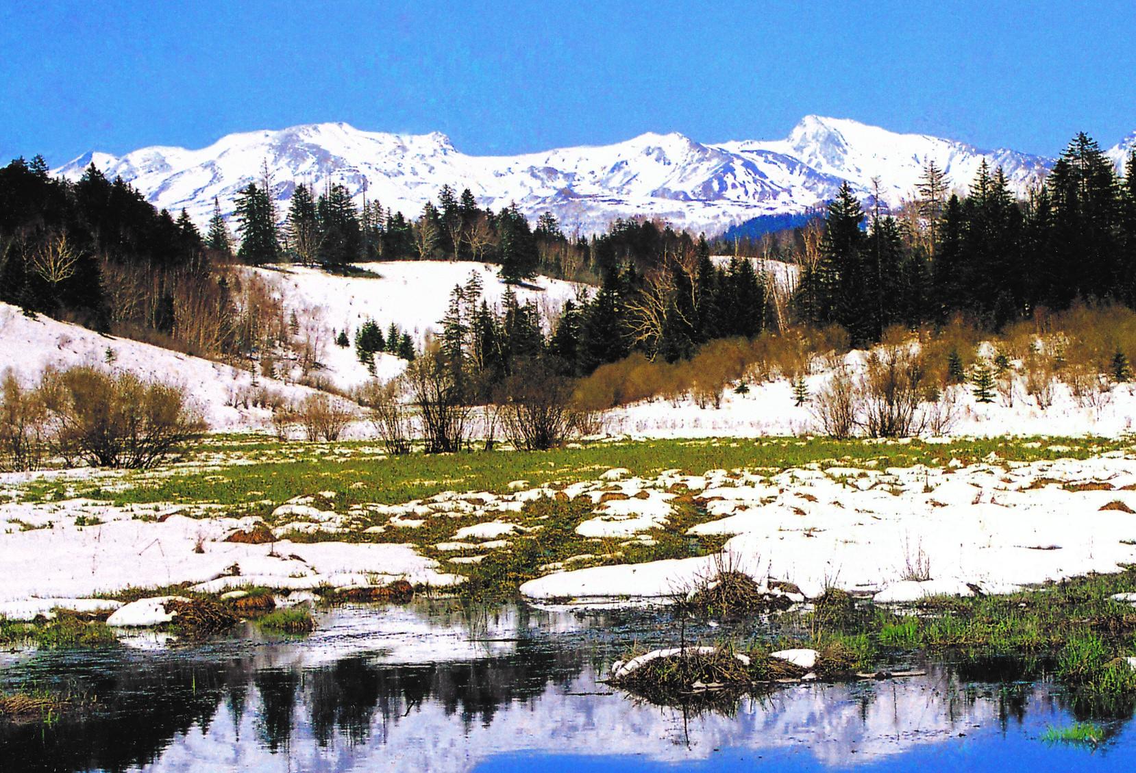 湖北襄阳雪韵风景