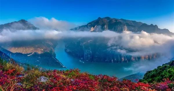 风景唯美自然清爽