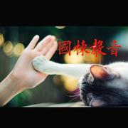 00安详(Music)-喜马拉雅fm